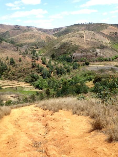 マダガスカルの山地